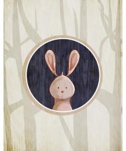 Kimberly Allen, Forest Animals 4