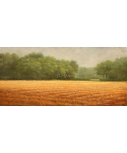 Hans Dolieslager, Cut cornfield