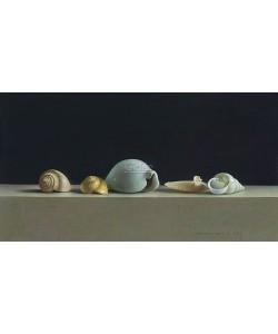 Henk Helmantel, Still life with Shells