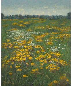 Eric De Vree, Flower field