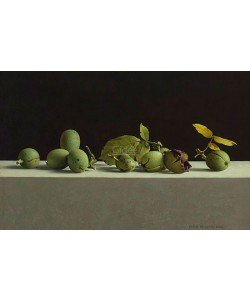Henk Helmantel, Walnuts in shells