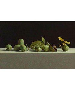 Henk Helmantel, Walnuts in shells