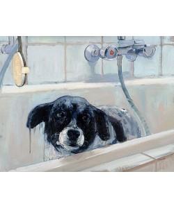 Pieter Pander, Stip in bath