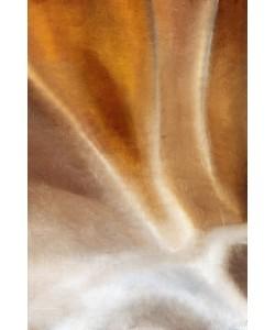 Kimberly Allen, Copper Wave