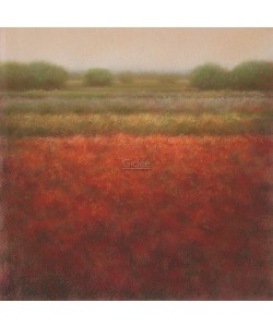 Hans Dolieslager, Red field