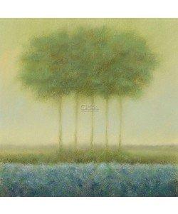 Hans Dolieslager, Blue landscape with 5 trees