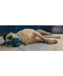 Pieter Pander, Gijsje (the 'gallery dog')