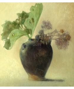 Pieter Knorr, Butterbur