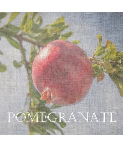 Sheldon Lewis, Pomegranate