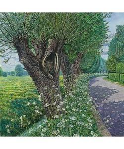 Drago Pecenica, Blooming