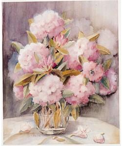 Gabriele von Hake, Rhododendron 2402