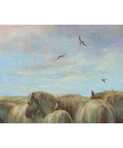 Erik van Ommen, Horses and barn swallows