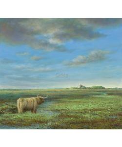 Erik van Ommen, Highland Cattle in Groningen