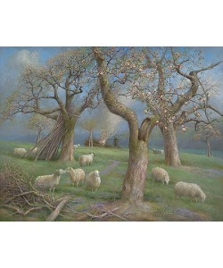 Patrick Creyghton, Sheep in the orchard
