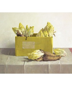 Henk Helmantel, Chicory in a yellow box
