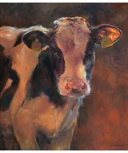 Geke Steenmetz, Bull Calf
