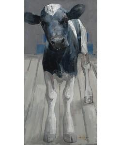 Pieter Pander, Black and white Holstein calf II
