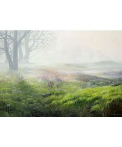 Geke Hoogstins, Mist over heathland
