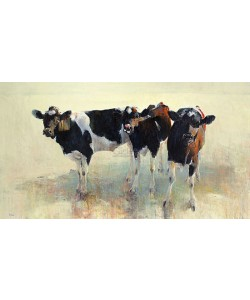 Hiske Wiersma, Young Cattle
