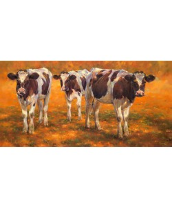 Geke Steenmetz, Cow calves in the early morning