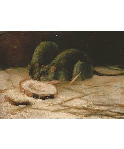 Vincent van Gogh, Zwei Ratten. / Deux Rats.  ca. 1884.