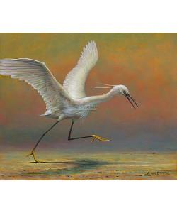 Erik van Ommen, Little Egret