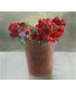 Dorry van de Winkel, Red anemones