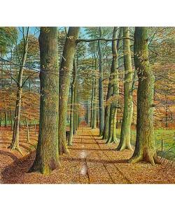 Drago Pecenica, Autumn Lane