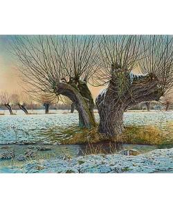 Drago Pecenica, Pollard willow in winter