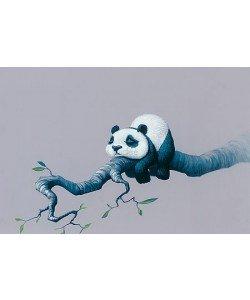 Jasper Oostland, Panda