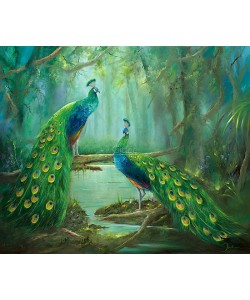 Jan Kooistra, Two peacocks
