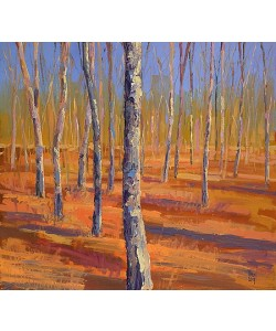 Theo Onnes, Birch forest