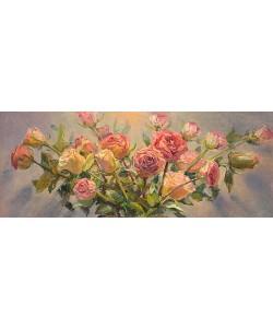 Keimpe van der Kooi, Roses