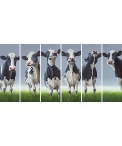 Geke Hoogstins, 6 pack Personalities