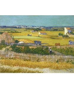 Vincent van Gogh, Die Ernte. Arles, Juni 1888.