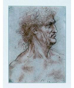 Leonardo da Vinci, Männlicher Kopf, mit Lorbeer gekrönt. Um 1506-07