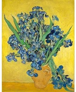 Vincent van Gogh, Irise. Saint-Rémy-de-Provence, May 1890.