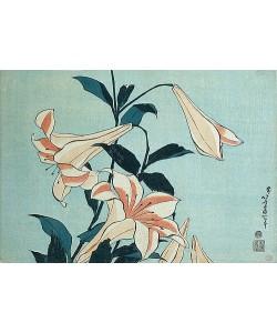 Katsushika Hokusai, Lilien.