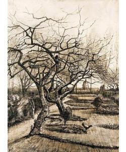 Vincent van Gogh, Der Garten des Pfarrhauses in Nuenen. 1884