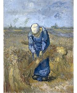 Vincent van Gogh, Garbenbindende Bäuerin (nach Millet). 1889