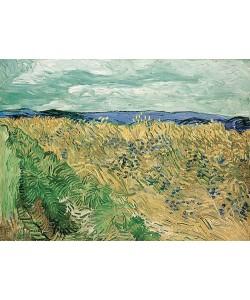 Vincent van Gogh, Weizenfeld mit Kornblumen, Auvers-sur-Oise. 1890