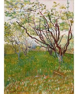 Vincent van Gogh, Blühender Obstgarten. 1888