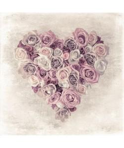 Assaf Frank, ROSE HEART