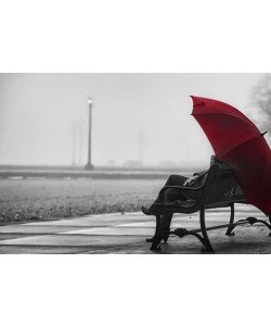 Sandro De Carvalho, RED UMBRELLA IV