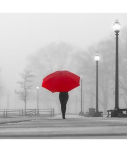 Sandro De Carvalho, BRIGHT UMBRELLA