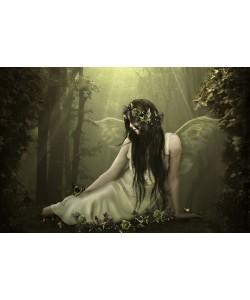 Babette, FOREST FAIRY