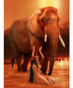 Babette, ELEPHANT RITUAL