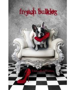 Babette, FRENCH BULLDOG