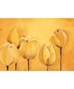 Florenti, Tulips on yellow