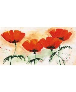 Florenti, Poppies on ricepaper II